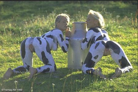 vaca Tremag